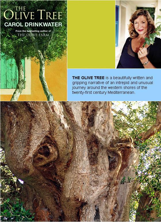 Tree Latvian Woman 47